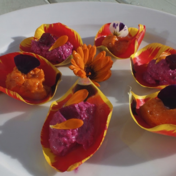 Tulip Recipes Stuffed Tulip Petals Maddocks Farm Organics